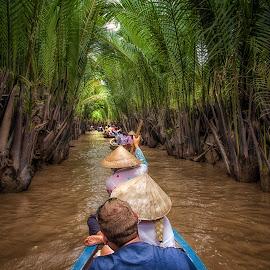 Delta Mekong by Ka Seng - Landscapes Travel ( water, delta, mekong, vietnam, ho ci minh )
