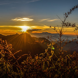 BRIGHT SUNLIGHT  by Jun Hao - Landscapes Sunsets & Sunrises ( indonesia mount bromo )