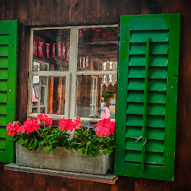 Green windows by Prasanta Das - Buildings & Architecture Other Exteriors ( flower pot, green, wndows )
