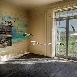 The Music Room by Katherine Rynor - Digital Art Places ( interior, piano, window, digital art, seagulls, surreal )