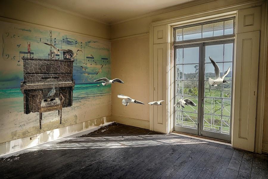 The Music Room by Katherine Rynor - Digital Art Places ( interior, piano, window, digital art, seagulls, surreal )
