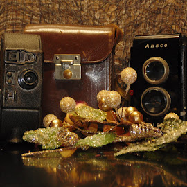 Old Camera gear by Tracy Halman - Artistic Objects Antiques ( old, recorder, antique, video, cameras,  )