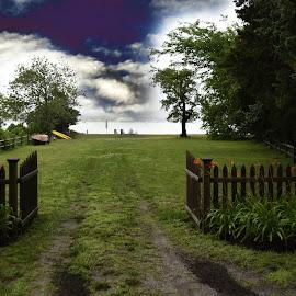 Walking Towards the Water  by Lorraine D.  Heaney - Landscapes Prairies, Meadows & Fields