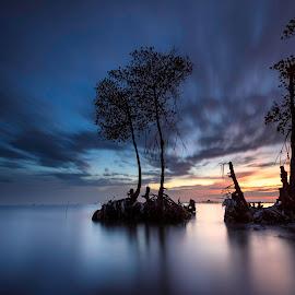 teluk naga trees by Rocky Jaya - Landscapes Waterscapes