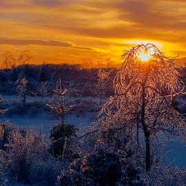 by Fan Leung - Landscapes Sunsets & Sunrises