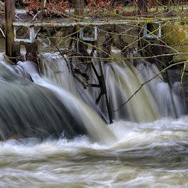 Wild Water by Marco Bertamé - Nature Up Close Water ( water, wild, cascade, long shutter speed )