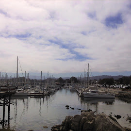 Monterey Fisherman's Wharf by Sarah Farber - Transportation Boats