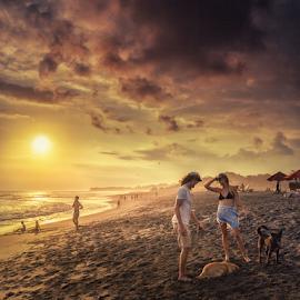 Sunset Action by Oyi Kresnamurti - People Street & Candids ( bali, sunset, couple, beach, dog, people )