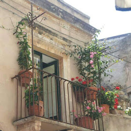 Italy by Lorraine Stockham - Buildings & Architecture Other Exteriors