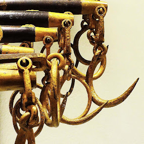 Hooks & Rings - Various Sizes by Alan Chew - Products & Objects Industrial Objects (  )