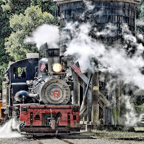 Roaring Camp, Felton CA by Susan Foss - Transportation Trains ( engine, train, roaring camp, steam )