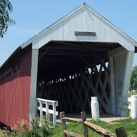 by Michael Collier - Buildings & Architecture Bridges & Suspended Structures