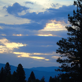 BLUE SKIES by Cynthia Dodd - Novices Only Landscapes ( clouds, mountain, blue sky, sky, trees, landscapes )