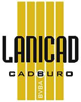 Punch Powertrain Solar Team Fortune 100 Lanicad