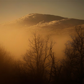 Fog in Mountain by Roald Heirsaunet - Landscapes Mountains & Hills