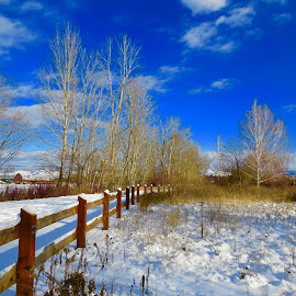 BC Winter Landscape by Nick Swan - Landscapes Prairies, Meadows & Fields ( winter, canada, landscape, bc, skies )