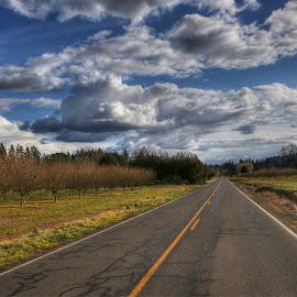 by Todd Klingler - Transportation Roads