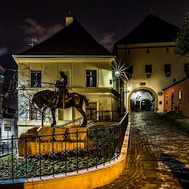 Zagreb by night by Mario Horvat - City,  Street & Park  Street Scenes ( lamps, statue, street, night, zagreb,  )