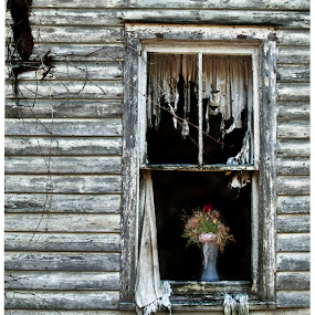 Life is a memory by Vicki Overman - Buildings & Architecture Homes ( window, window with flowers, flower vase, abandond house, abandoned )