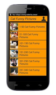 Cat Funny Pictures - screenshot