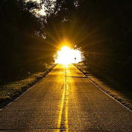 Into the Light by Mitch Tranmer - Uncategorized All Uncategorized ( road, light, uplifting, sun, trees, peaceful )