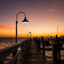 Sunrise Over Pine Island Sound by Tad May - Landscapes Waterscapes ( morning sun, boat dock, sunrises, sunsets, sunset, marina, sunrise, street lights )