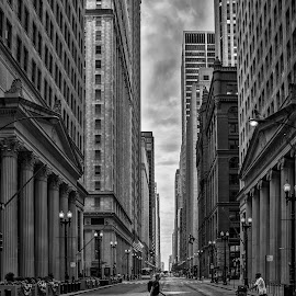 Chicago by Péter Mocsonoky - City,  Street & Park  Street Scenes ( urban, building, america, states, architecture, chicago, big, usa, city )