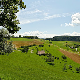Gubel, Switzerland by Richard England - Landscapes Prairies, Meadows & Fields ( summer landscape, switzerland, gubel, landscape, farmland )