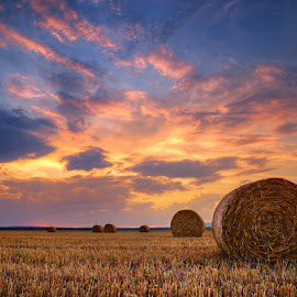 20170722-DSC_1233 by Zsolt Zsigmond - Landscapes Prairies, Meadows & Fields ( bale, agriculture, yellow, landscape, crop, field, farm, gold colored, sky, nature, sunset, harvesting, hay, outdoors, summer, rural scene )