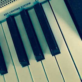 Electric piano  by Nergui Dorj - Artistic Objects Musical Instruments ( music, electric piano, keyboard, songs, play, white, enjoy listening, love, musical instrument, shadow, artistic, musician, black, sounds )