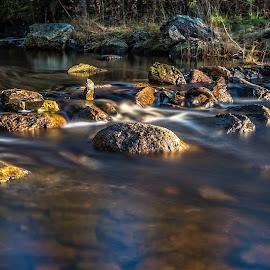 Elv kanal by Dag Hafstad - Landscapes Forests