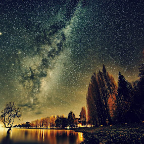 That Tree Rise by Jomy Jose - Landscapes Starscapes ( wanaka, south island, that lone tree, lake wanaka, new zealand, lone tree astro, wanaka tree )