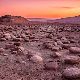 rounded rocks by Tamir Vaknin - Landscapes Deserts ( orange, desert, sunset, south, israel )
