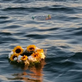 Burial at Sea by Chris Gray - Instagram & Mobile Android ( death, sunset, sea, ocean, wreath,  )