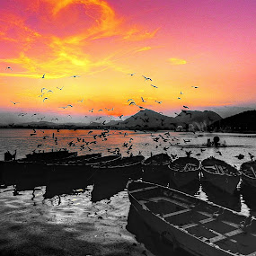 Flying to the horizon by Anshul Sukhwal - Travel Locations Landmarks ( water, hills, sukhwal, colorful, colors, rajasthan, boats, lake, photo, birds, photography, taking, anshul, flying, mountains, anshul sukhwal., sunset, udaipur, fountain, off, india )