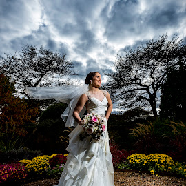 The Wedding Bride by Rob Krueger - Wedding Bride ( sky, gorgeous, dress, wedding, bride )