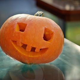 by Ciprian Apetrei - Public Holidays Halloween