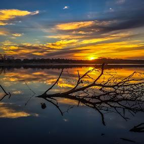 Sunrise by Mike Hotovy - Landscapes Sunsets & Sunrises (  )