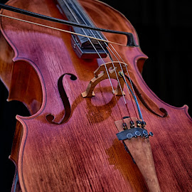 The Cello by Marco Bertamé - Artistic Objects Musical Instruments ( music, wood, string, brown, cello, black, curves )