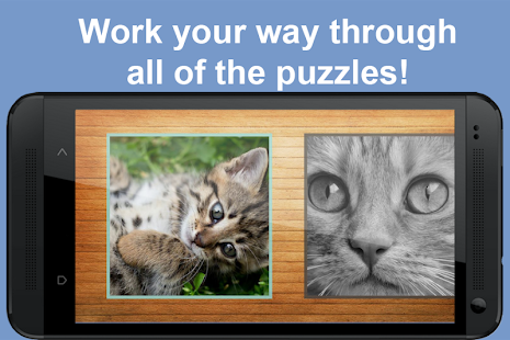 Cat and Kitten Jigsaw Puzzles - screenshot