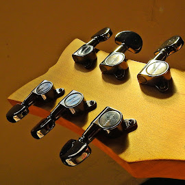 Guitar, partially by Pradeep Kumar - Artistic Objects Musical Instruments