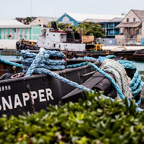 The Snapper by Debbie Jones - Transportation Boats ( boat, snapper, bahamas, nassau )