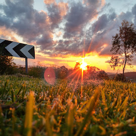 End of the road by Tom Gough - Instagram & Mobile iPhone ( grass, sunset )