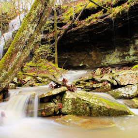 Lower Twin Falls by Jamie Newton - Landscapes Waterscapes ( boston mountains, ozarks, water fall, spring )