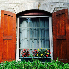 Window Garden by Marsha Sices - Buildings & Architecture Architectural Detail