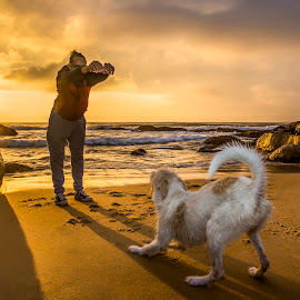 Jaderson and Zé at sunrise  by Rqserra Henrique - Animals - Dogs Playing ( sunrise, beach, playing, dog, friends, wave, rqserra )