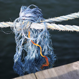 On the Dock by Leah Zisserson - Artistic Objects Business Objects ( harbor, rope, rhode island, blue, dock )