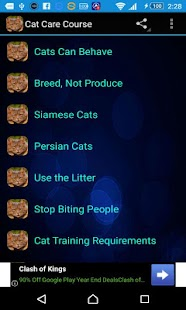 Cat Care Course - screenshot