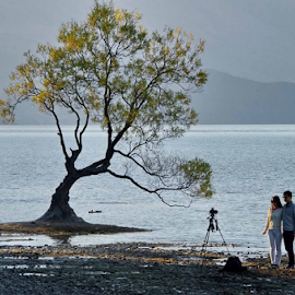 Don't Move by Winkie Chau - People Couples ( photographer, behind the scene, lake wanaka, new zealand, lonely tree, photographers, taking a photo, photographing, photographers taking a photo, snapping a shot )
