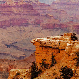 Grand Canyon 3 by Dave Walters - Landscapes Mountains & Hills ( az, national park, travel., colors, moody, senic, grand canyon,  )